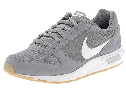 Nike Nightgazer, Zapatillas de Running para Hombre, Gris (Cool Grey/White/Gum Light Brown 007), 41 EU
