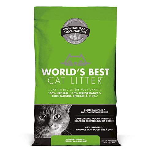 World's Best Cat Litter Katzenstreu, Klumpsteu, 6.35 kg
