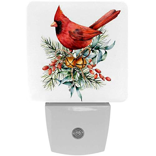 Multi 2 2 Pack Plug-in Nightlight Led Night Light Watercolor Christmas Vintage Floral Berries Poinsettia Feathers and Bird with Dusk-to-Dawn Sensor for Kids Room