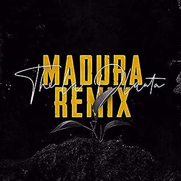 Madura (Remix)