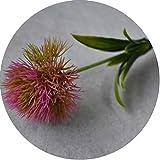 Small-shop&Decoration artificial flowers Fleurs Artificielles Pissenlit Plastique Fleur Mariage Maison Décoration de Saint Valentin Longueur 25 cm One Size Rose