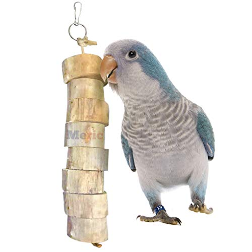 Meric Bird Shreddable Toy, for Parakeet, Budgie and African Grey, Strengthen Beaks, Entertainer, Stress Reliever, Hang in Cage, 1-Piece