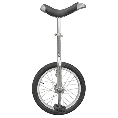Best Review Of Fun 16 Inch Wheel Unicycle with Alloy Rim