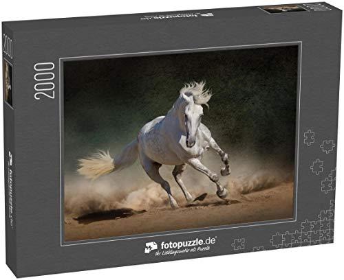 fotopuzzle.de Puzzle 2000 Teile Weißes andalusisches Pferd im Wüstenstaub vor dunklem Hintergrund