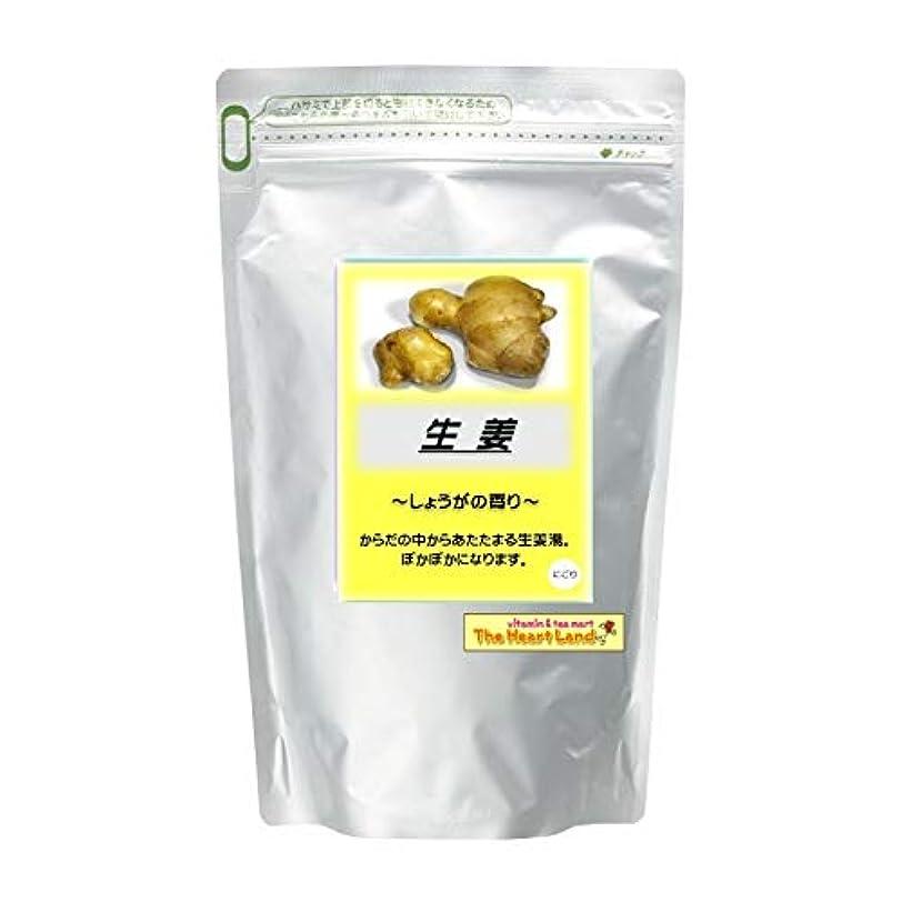 ベンチ鉄道クロニクルアサヒ入浴剤 浴用入浴化粧品 生姜 2.5kg