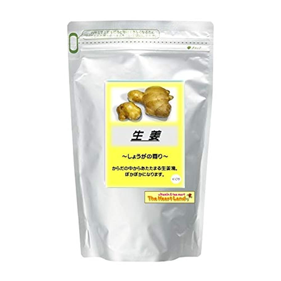 作者圧縮葬儀アサヒ入浴剤 浴用入浴化粧品 生姜 2.5kg