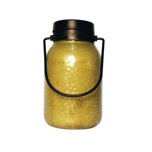 A Cheerful Giver Buzz Off Citronella 16 oz. Simplicity Lantern Jar Candle