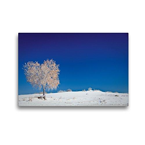 CALVENDO Premium Textil-Leinwand 45 x 30 cm Quer-Format Weisheiten über das Leben/CH-Version, Leinwanddruck von Ralf Kaiser