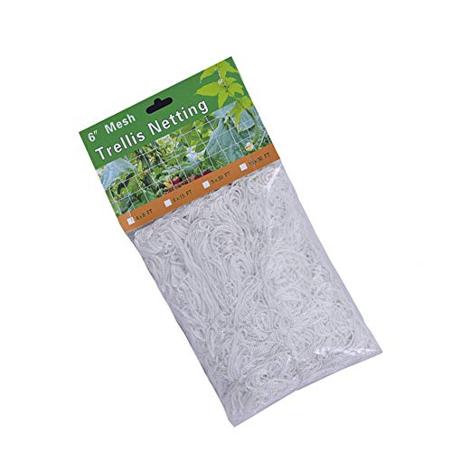 Raybre Art Garden Netting Plant Supports for Pea Beans Cucumbers Fruits Climbing Plants 3.3x10M