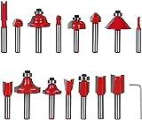 flintronic Fresas Set, 15 PCS Cortadores Caja de plastico de Diámetro de Caña Herramienta de Fresado, Kit de herramientas de carpintería con caja de madera para el hogar y bricolaje