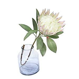 Calcifer 1 Pcs 75 cm The King Protea (Protea Cynaroides) Artificial Flowers Plants for Home Garden Wedding Party Decoration (Beige, 1)