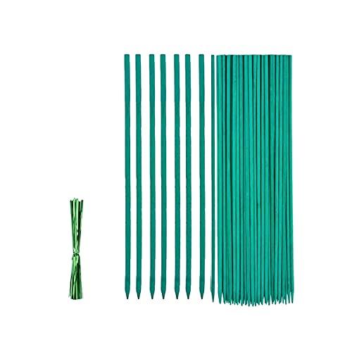 Bastoncini di Supporto per Piante, 50 Pezzi 30cm Bastoncini di bambù verdi, Bastoncini da Giardino...