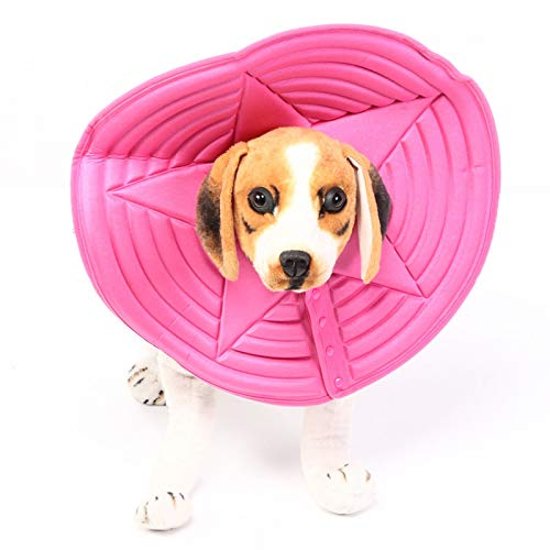 Tomantery Collar para Mascotas de 5 tamaños, Collar de Anillo Suave para Perros y Gatos, para Animales pequeños para Evitar infecciones secundarias(XL)