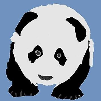 Stranded Pandas