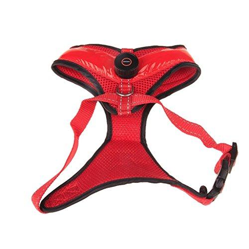 Pet Harness, Brustgurt, Weste, LED Glow, Hundegeschirr, Haustierzubehör (Farbe : Red, größe : L)