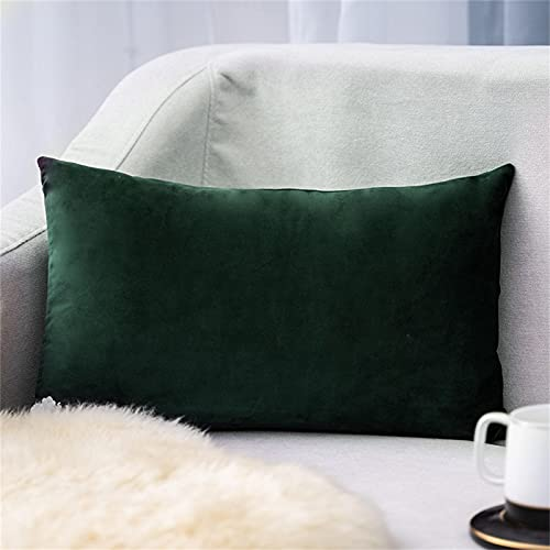 Funda de cojín de terciopelo monocolor, 30 x 50 cm, funda de almohada decorativa muy suave, cojín decorativo para sofá, sofá, dormitorio, salón, con cremalleras (J)