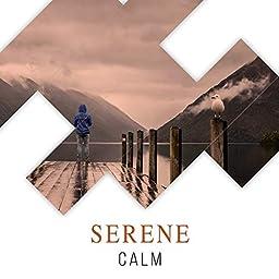 Serene Calm by Forest Ambience & Rain for Deep Sleep on