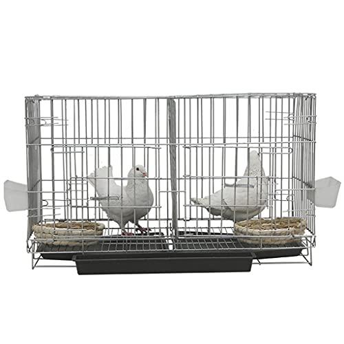 Uccelli Gabbie per Uccelli Gabbie per Uccelli Portatili in Ferro da Casa con Casetta per Uccelli, Scala, Tazza d Acqua Le Gabbie per Uccelli Comode E Solide Sono Facili da Appendere