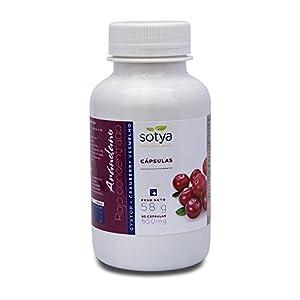SOTYA - SOTYA Arándano Rojo Concentrado 90 cápsulas 650mg