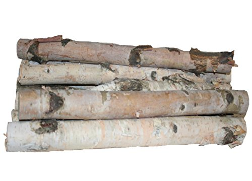 Wilson Enterprises Northern White Birch Logs, Set of 8
