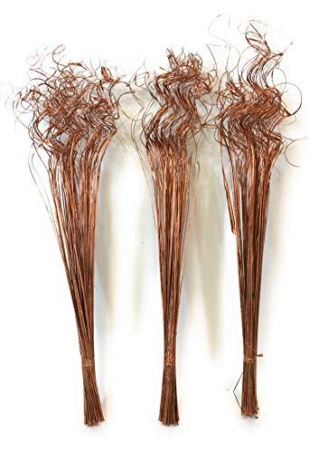 3 Ramas de Hierba de espray India Seca de Oro Rosa de Aproximadamente 75 cm de Alto, 100 Gramos de Peso por Ramo
