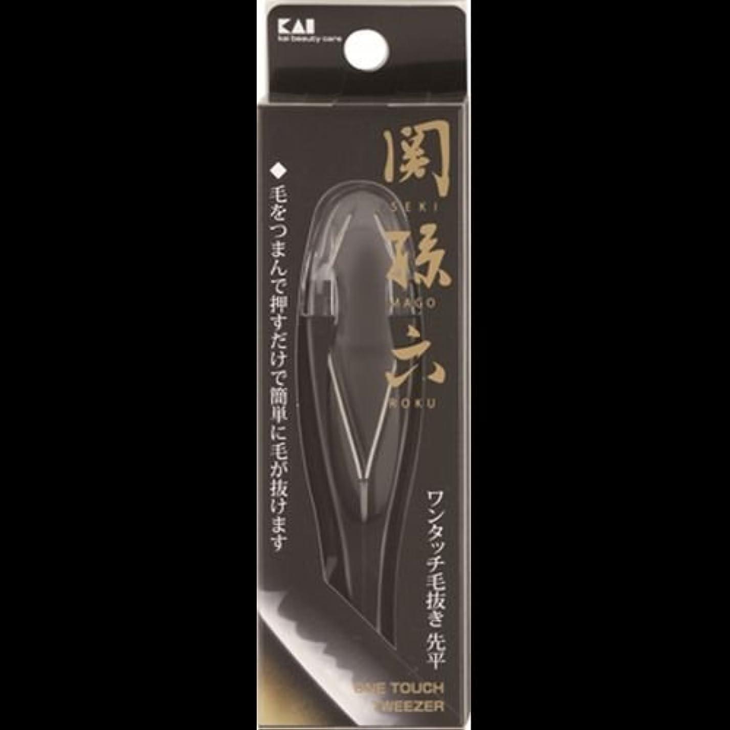 漏れ質量ファンネルウェブスパイダー【まとめ買い】関孫六 ワンタッチ毛抜き(先平) ×2セット