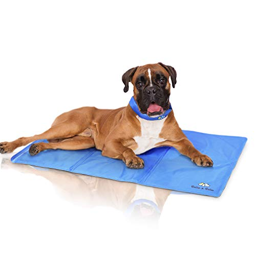 Bella & Ballu Alfombra refrescante para Perros y Gatos + Collar refrescante – La Esterilla refrigerante Protege a su Mascota del Calor – para Interior, Exterior y para el Coche (Tamaño M)