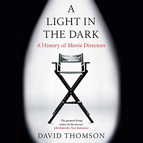 A Light in the Dark cover art