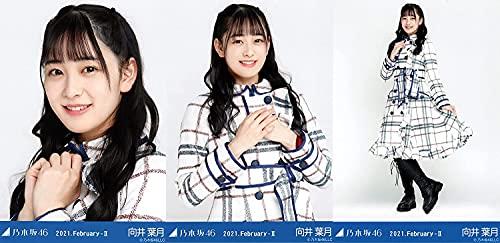 乃木坂46 2021年2月ランダム生写真 スペシャル衣装29 3種コンプ 向井葉月