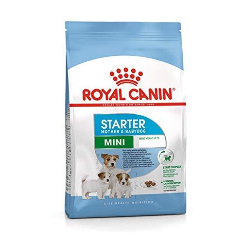 Royal Canin C-08315 S.N. Mini Starter - 3 Kg