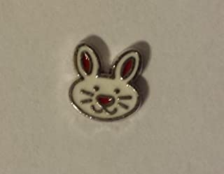 Easter Bunny Floating Charm for your Origami Owl Locket