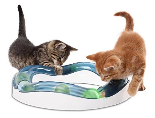 Catit 50735 Senses Tempo – Spielschiene für Katzen - 2