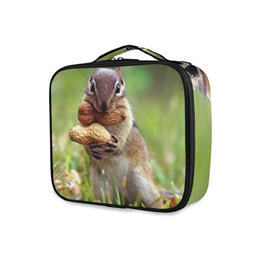 Schminktasche Eichhörnchen Erdnuss Lagerung Kulturbeutel Werkzeuge Kosmetische Zug Fall Reise niedlich tragbar
