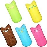 TOCYORIC 5 PCS Hierba Gatera Juguete, Catnip Mascota de Juguete, Juguete Catnip para Gatos, Juguetes del Catnip, Protección del Cuidado Dental, Adecuado Juguete para Gatos de Interior
