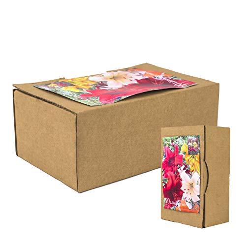 20echte Lilienzwiebeln in verschiedenen Farben - Blumenzwiebeln in Geschenkverpackung - mehrjährig, gartenpflanzen winterhart Knollen Lilium Lilien - Hohe Qualität (20 Lilien Tiger mix)