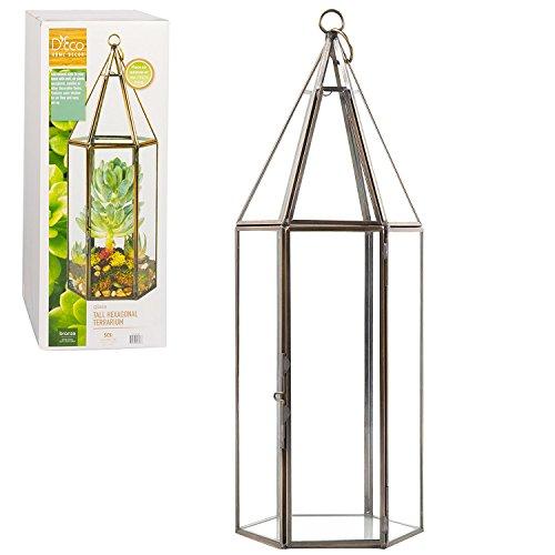Deco Glass Geometric DIY Terrarium for Succulent & Air Plant - Hanging...