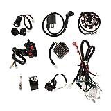 KESOTO Kit Completo de Cable CDI Estator Imám para Motocicleta 150-250cc