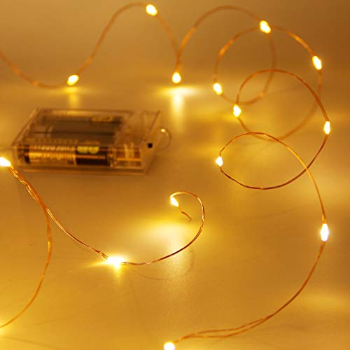 Twinkle Star 33FT 100 LED Copper Wire String Lights Fairy String Lights Battery Operated LED String Lights for Christmas Wedding Party Home Holiday Decoration, Warm White, 2 Pack