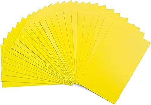 Trampa para insectos y bridas, pegatinas autoadhesivas, 20 unidades, tabla amarilla de doble cara, PVC, resistente al agua y rizos, eficaz moscas blancas y áfidos.