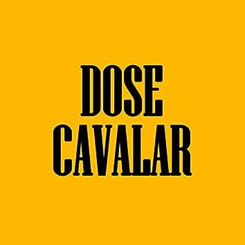 Dose Cavalar