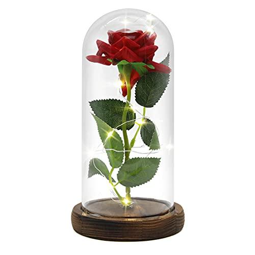 Die Schöne Und Das Biest Rose In Glaskuppel LED-Lichter,Enchanted Rose Eternal Rose Satz aus Seide,Romantisches Geschenk für Frauen Weihnachten,Valentinstag,Geburtstag,Hochzeit Jahrestag