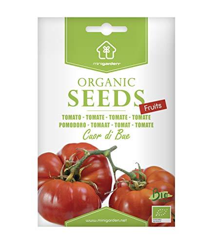 Ochsenherztomate, zertifizierte biologische Samen von Minigarden, enthält zwischen 125 und 150 Samen