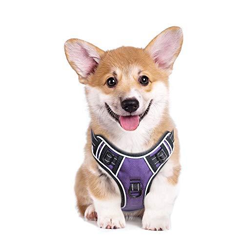 HEELE Hundegeschirr Reflektierend Hundegeschirr Hundesport Gepolstert Brustgeschirr No Pull Geschirr Hund Verstellbares mit Reflektierendem Zuggeschirr Hundegeschirr Mittel Hunde Lila M