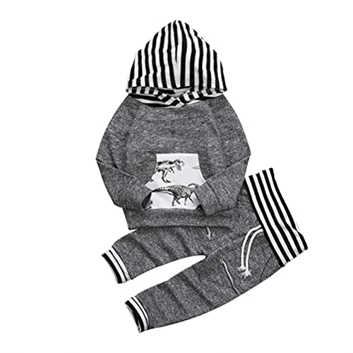 Conjunto de sudadera con capucha y diseño de dinosaurio de manga larga para niños pequeños, 2 piezas, juego de ropa para recién nacidos (gris, 4 años)