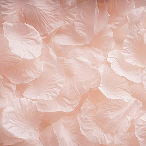 RUIYWEN 1000 Pezzi di Petali di Rosa in Seta Artificiale Color Champagne per San Valentino, Fiori per Matrimoni, Coriandoli, Spargimento da Tavola