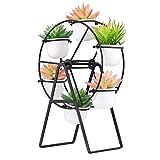 Lovecat 12 inch Ferris Wheel Shaped Flower Pot Stands Holder,with 6 Round Ceramic Succulent Plant Pots,for Home Garden Office Desktop Decoration (Black)