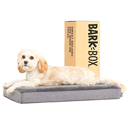 Barkbox Memory Foam Platform Dog Bed | Plush Mattress for Orthopedic Joint Relief (Small, Grey)