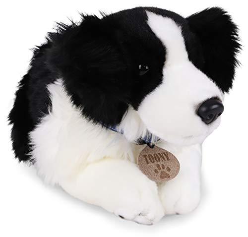 TOYLAND 35 cm Toony The Border Collie - Perro de Peluche - Juguetes Blandos para niños - Exclusivo