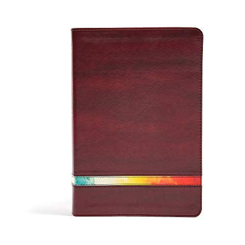 Compare Textbook Prices for NIV Rainbow Study Bible, Maroon LeatherTouch, Indexed Indexed Edition ISBN 9781433646102 by Holman Bible Staff