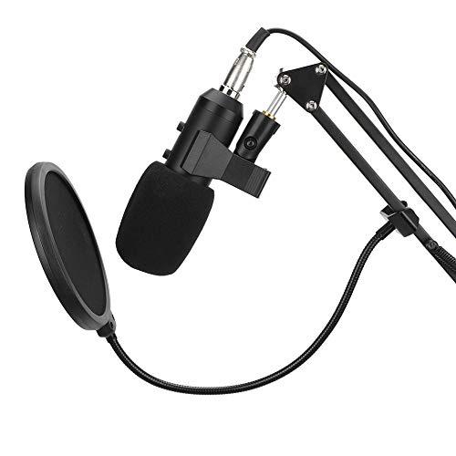Micrófono de Estudio, USB Condensador con Cable Karaoke Grabación 800 Reverb Micrófono cardioide con Soporte y esponjas a Prueba de Viento para Instrumentos Musicales, difusión, entrevistas
